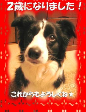 Tsuki060403
